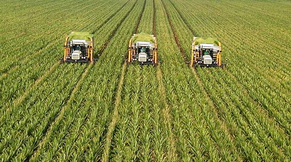 конвенционално земеделие